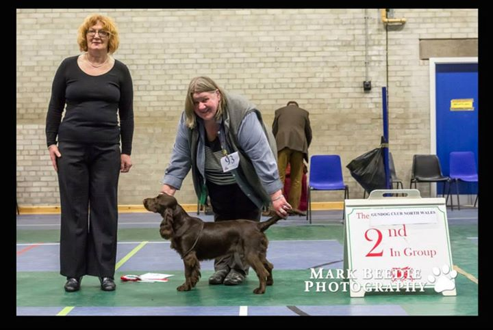 S Brookshaw Anbrook Dog Show Judge